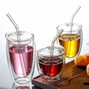 Classic Insulated Tumblers Double Wall Glass Cup with Straw