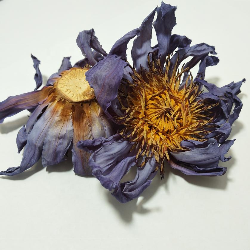 4009 Lan lian hua prompt delivery blue lotus herb - 4uTea | 4uTea.com
