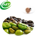 Green Coffee Extract Powder Powder Green Coffee Extract Organic Green Coffee Bean Extract Green Coffee Bean Extract Powder