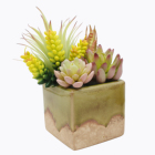 Mixed Realistic Plants Artificial Succulents Picks Small Bulk Flowers