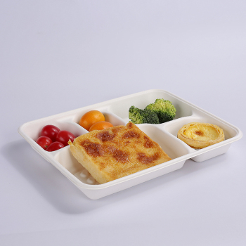 unbleached biodegradable compostable bagasse 5 compartment tray