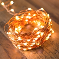 Christmas outdoor copper wire warm white battery operated powered twinkle fairy starry led string light for patio party wedding