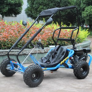 Gas Powered 196CC Mini Go Kart Dune Buggy with roller cave for sale