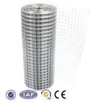 2*2/4x4 Galvanized Welded Wire Mesh