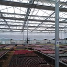 Commercial greenhouse industrial hydroponic greenhouse systems