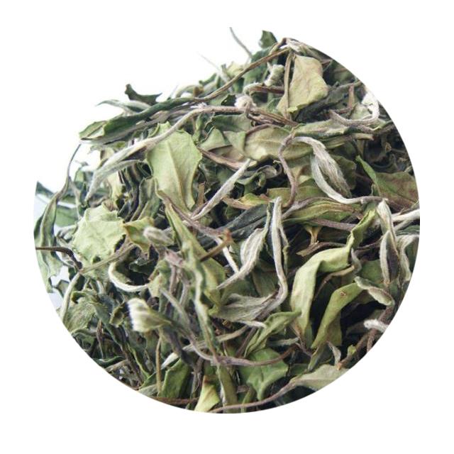 Hot sale EU Standard Healthy Fujian White Peony White Tea - 4uTea | 4uTea.com