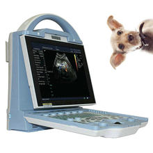 DCU12 Laptop Medis Portabel Perangkat Diagnostik Ultrasonic Medis Hewan Ultrasound Scanner