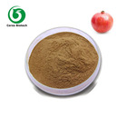Cosmetic Special Whitening Raw Material Pomegranate Skin Extract Ellagic Acid Hydrate Powder