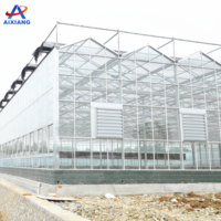 Professional agricultural glass equipment greenhouses from AiXiang