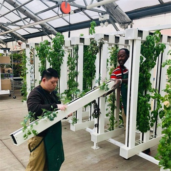 Factory Direct export zip hydroponic systems grow tower channel