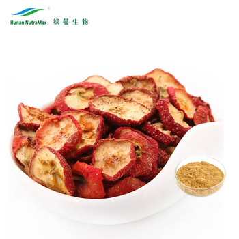Chinese cGMP Factory Natural Hawthorn Berry Extract/Crataegus Pinnatifida Bge Powder 4:1~20:1 Top Quality