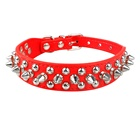 Whosale Fashionable Rivets Studded Pet Collar De Perro for Dogs
