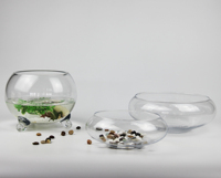 Modern Clear Table Glass Flower Fish Bowl