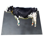 Reclaimed Rubber Black Color Eva Cow Stable Mats
