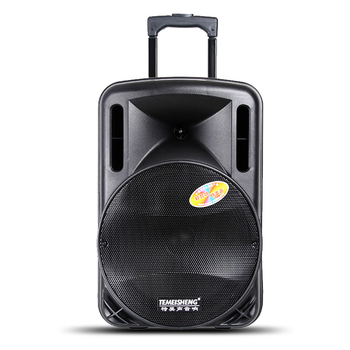 temeisheng 12 inch active party professional dj trolley speaker with subwoofer