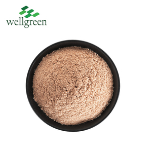 WellGreen Supply Dried Organic Oregano Leaves Oregano Powder for Feed Additive