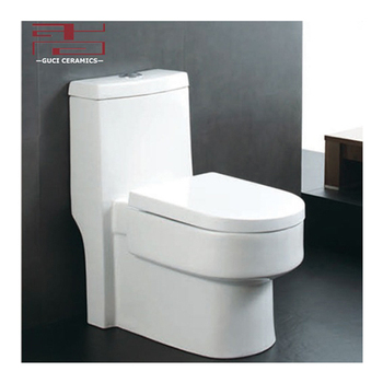 Modem washdown one piece toilet design