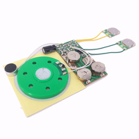Two Button Voice Recording Greeting Card Sound Chip