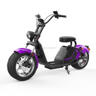 China Factory Supply adult electric scooter 5000w eec 3000w