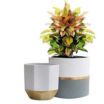 "White Garden Planters 6.5"" Pack 2 Plant Containers with Gold and Grey cement concrete planter"