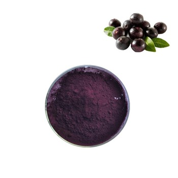 100% Natural Organic Acai Berry Powder Factory Supply