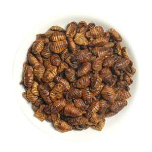 Silkworm Variety and Fish Use Dry Silk Worms