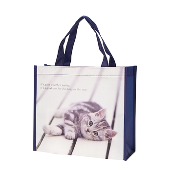 Laminated Non Woven Bag, Striped Shopping Bag for Traveling