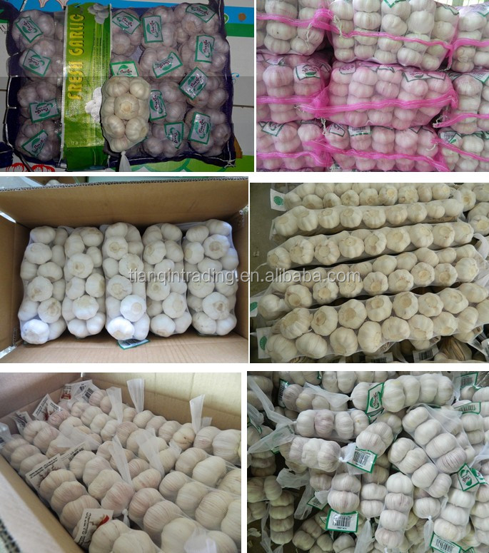 China garlic manufacturer