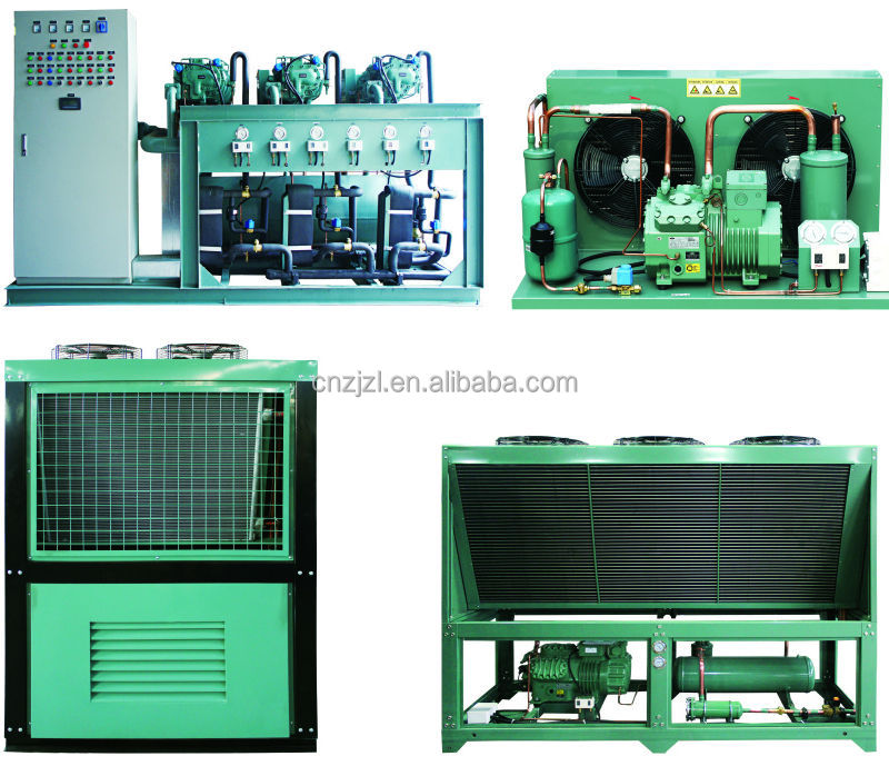 Large-Scale Bitzer Cold Room Condensing Unit With Many Compressor In Parallel