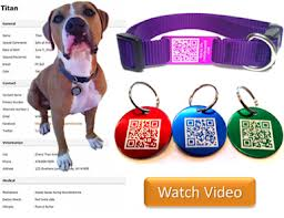 Wholesale QR Code Nylon Dog Collar and Colorful Keychain QR Code Dog Tags