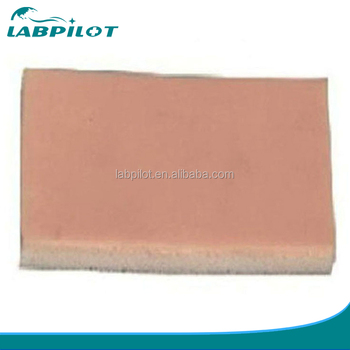 Sebaceous Glands Cyst Resection Practice Model - Buy Sebaceous Glands  Cyst,Cyst Resection,Sebaceous Cyst Resection Product on Alibaba com