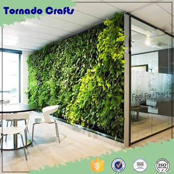 Office Green House Artificial Green Wall Veoffice Green House