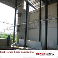 Cooler Room PU Sandwich Panels with Cam Lock
