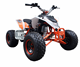 Madix 150cc Gas Quad ATV For Kids/adults with CE Approved
