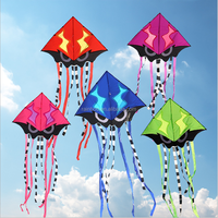 Promotional new designs custom shape cheap kite