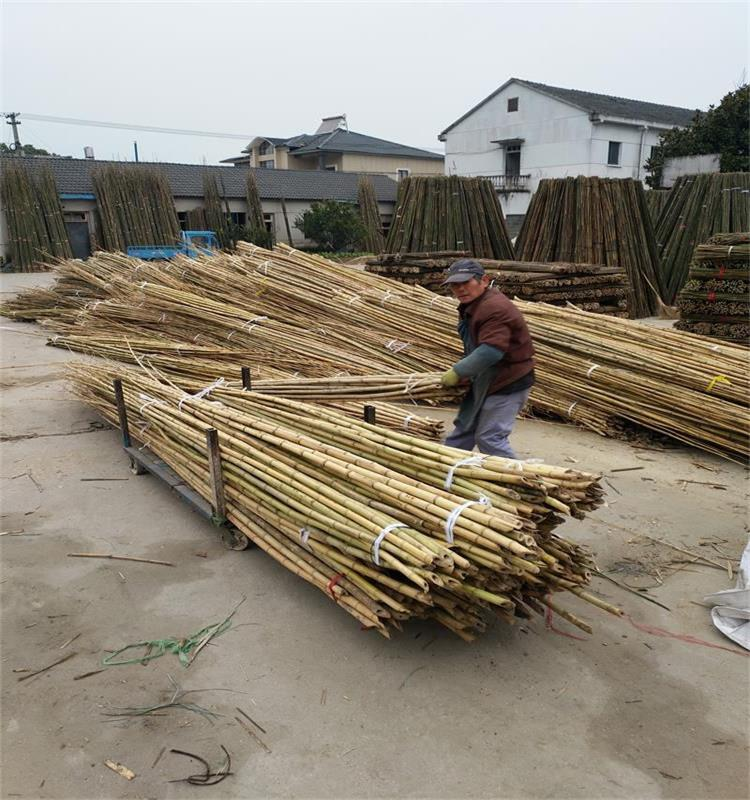 Artificial tonkin bamboo poles timber raw materials imported from China