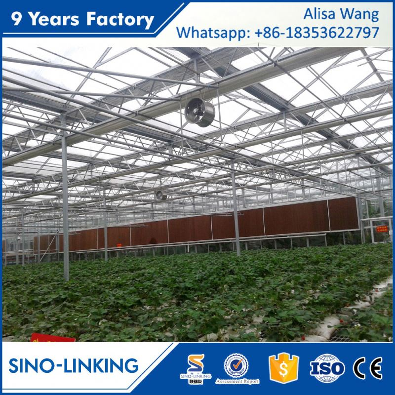 SINOLINK 2017 hot sale hot dipped galvanized with Polycarbonate sheet greenhouse manufacturer in india for commercial