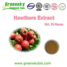 factory supply high quality Natural Hawthorn extract (flavones)