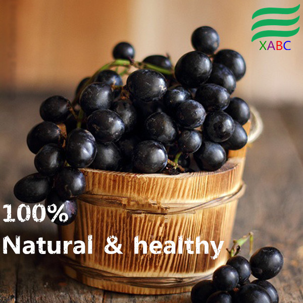 Natural Blackcurrant Extract Cyanidin-3-rutinoside Powder In Hot Selling!