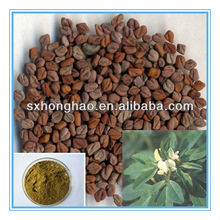 Top Quality Fenugreek Extract 50% Furostanol Saponins