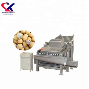 3t/h Advanced Commercial Longan Peel Process Peeling Machine