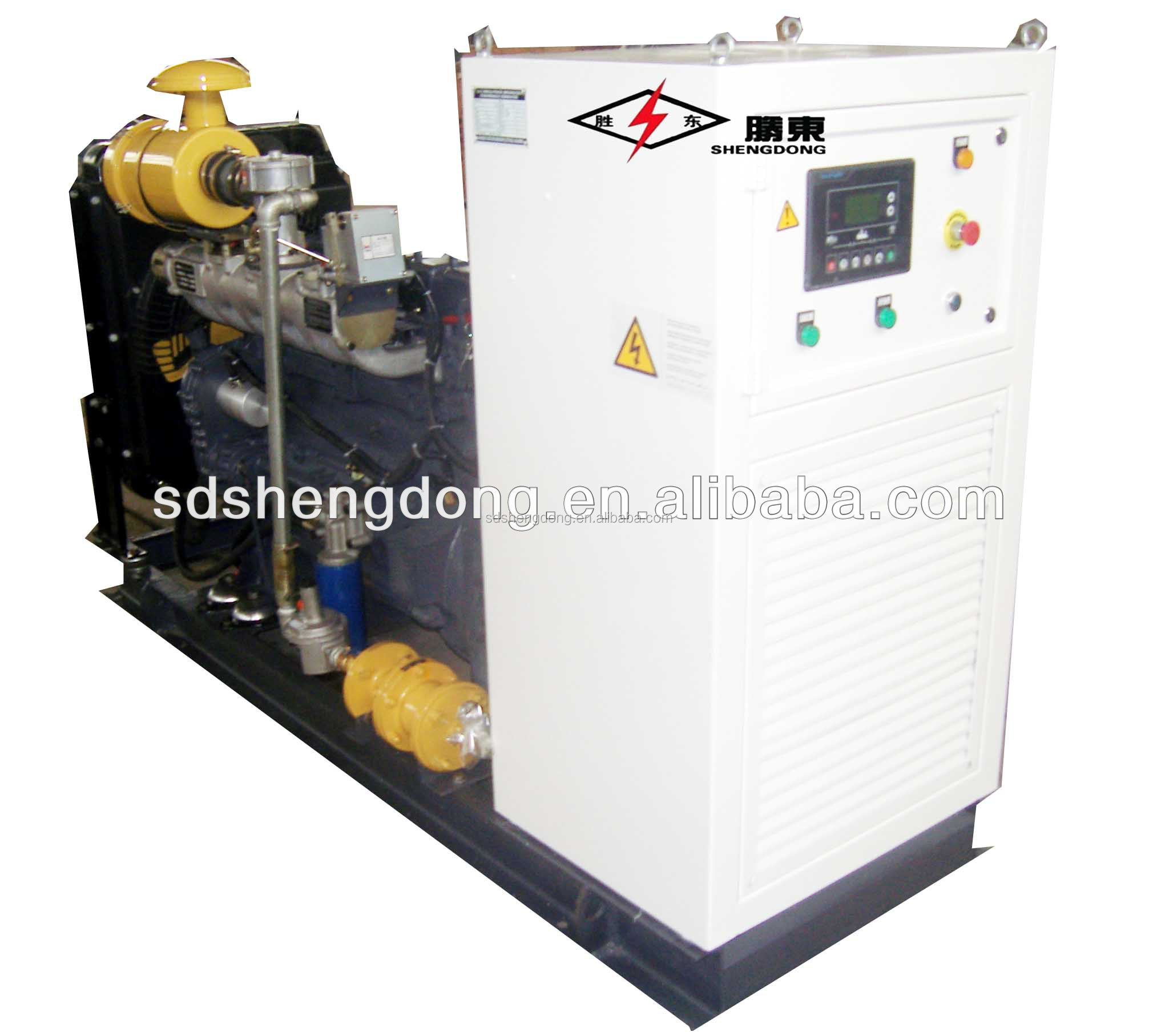 Factory Discount Price Biogas/Natural Gas/LPG/CHP Generator