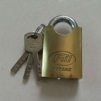 Chrome Plated Arc Type Vane Whole Shackle Protected Padlock
