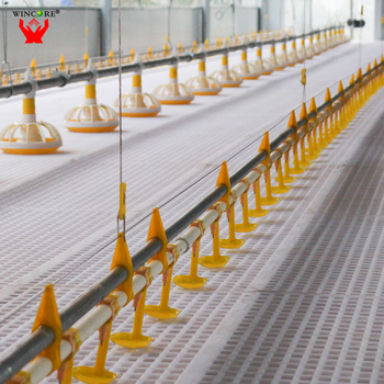 Business Plan Automatic Poultry Farm Chicken Farming Equipment Design Modern