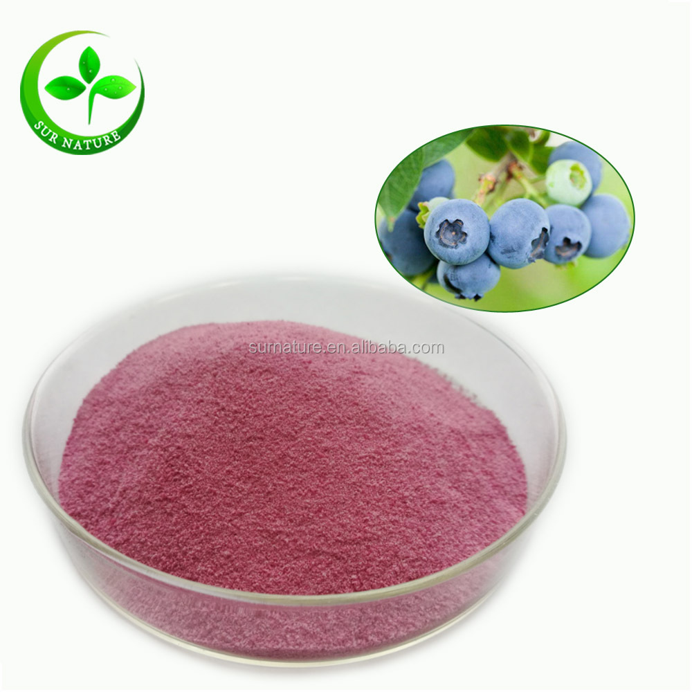 Top Quality Natural Fresh Blueberry Powder Bulk
