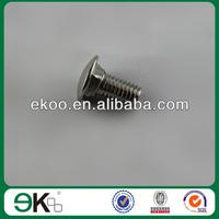 stainless steel carriage bolt(EK23D)