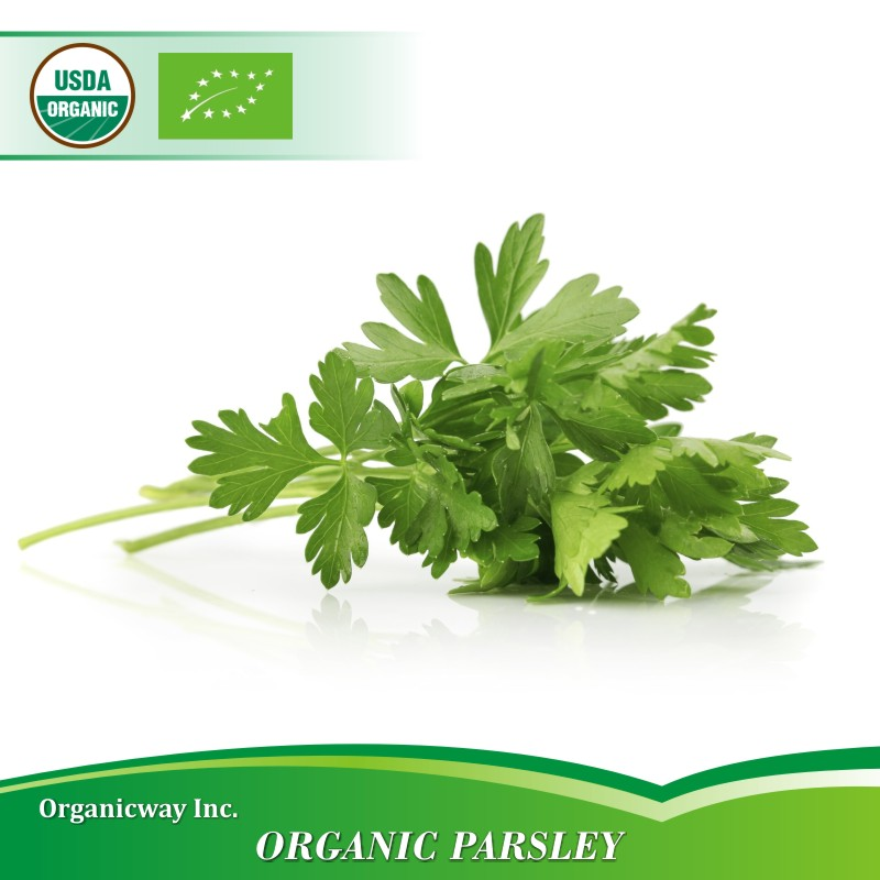 NOP EU Certified Organic Parsley