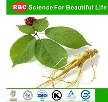 Popular Products Top Quality Ginseng Stem And Leaf Powder By Low Pesticide Residues Extract/herbal extract/plant extract