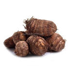 Cheap price fresh colocasia / export to middle east fresh taro in bulk