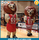 inflatable Mascot Costume suit lion for football and basketball matches